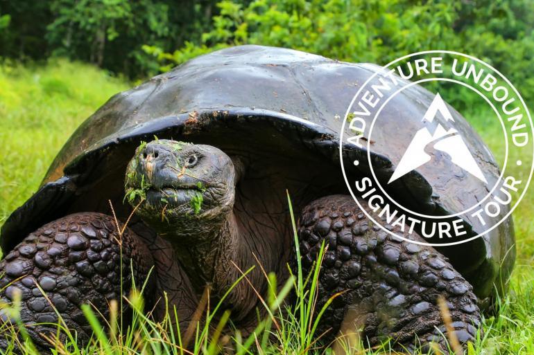 Galapagos Unbound - Signature Tour tour