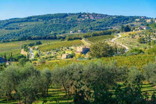 Tuscany, Italy's Heartland tour