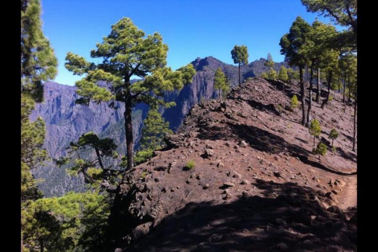 Self-Guided La Palma tour