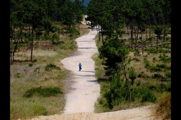 Education / Learning Cycling Cycle Portugal - Lisbon to Algarve package