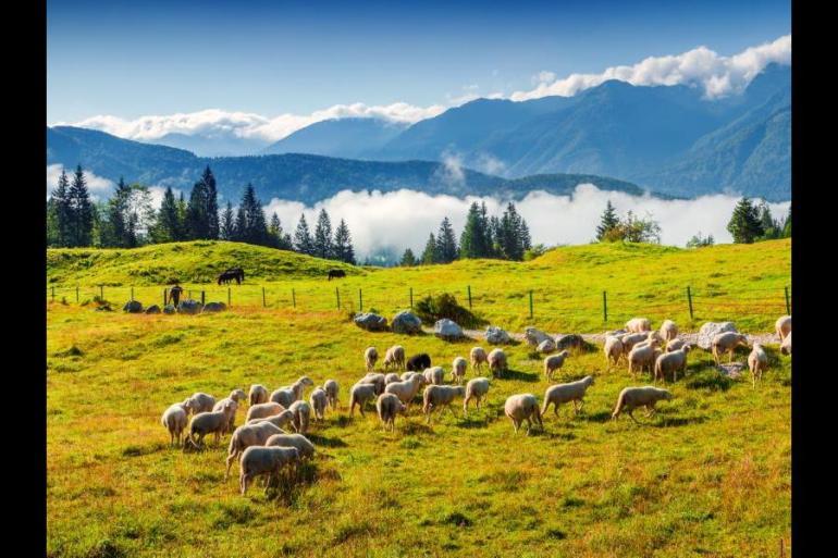 Adventure Adventure & Adrenaline Family Active Slovenia package
