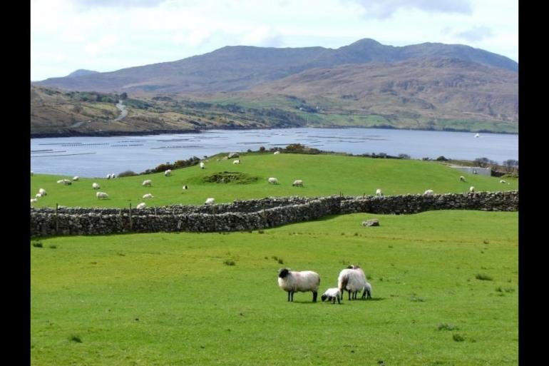 The Connemara Experience - 7 Days tour