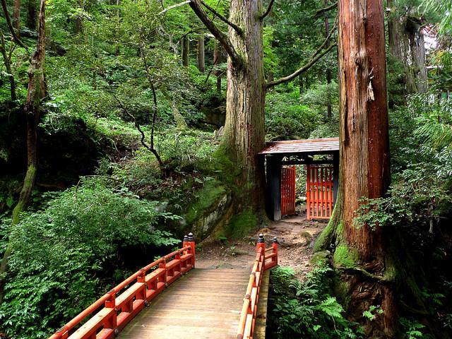 Japan Biking tour