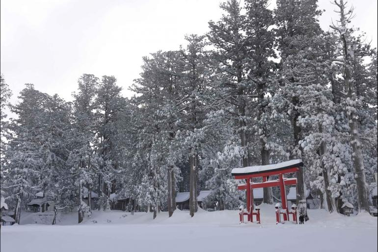 Hiroshima Imperial Palace Japan Winter Explorer Trip