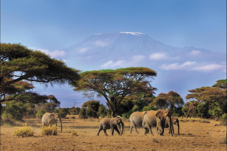 Amboseli National Park Nairobi Kenya Safari Experience - Independent Trip