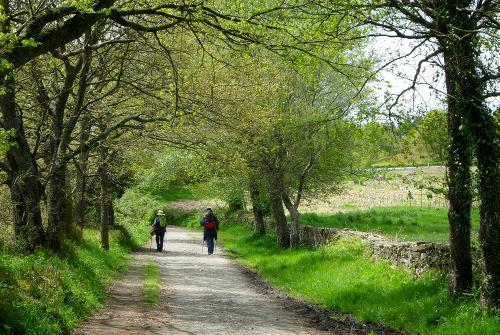 The Full Camino Norte tour