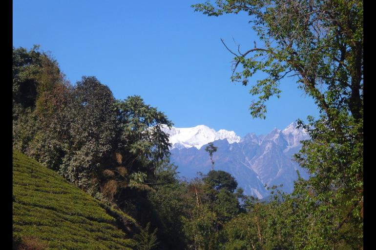 Darjeeling, Sikkim & the Singalila Ridge tour