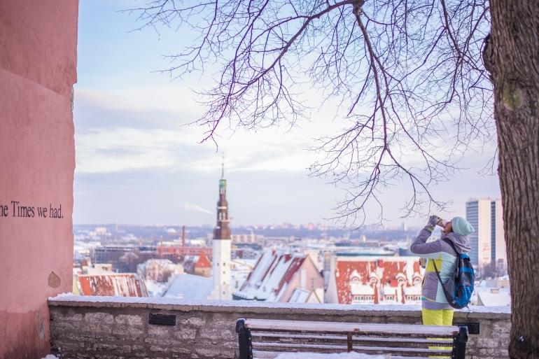 Backpacker Over Tallinn's Old Town, Estonia