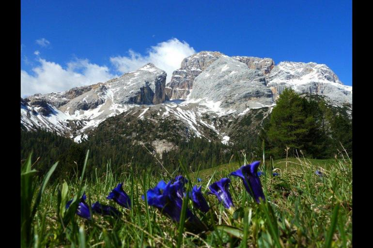 Headwater - Self-Guided Walking in the Italian Dolomites - Premium tour