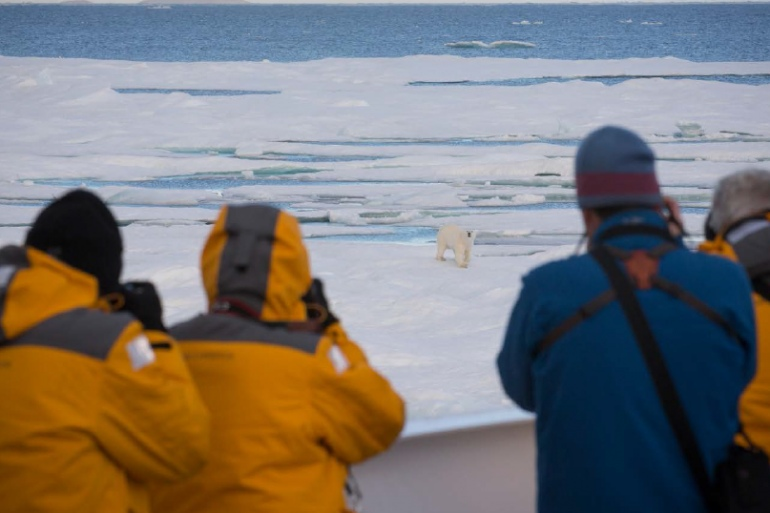 Nature & Wildlife Nature Best of the Western Arctic: Canada and Greenland package