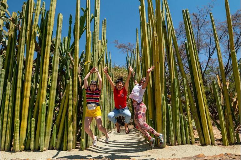 Chichen Itza Mexico City Mexico Unplugged Trip