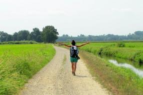Francigena Way: Plains to Pavia tour