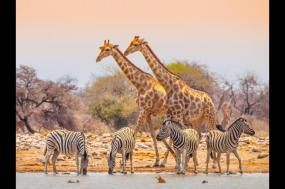 Namibian Adventurer tour