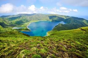Whale & Dolphin Watching in the Azores tour