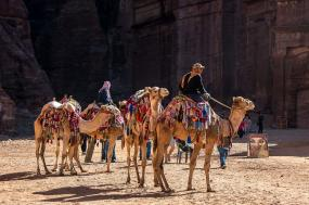 Egypt & Jordan 15 Days First Class Tour & Nile Cruise tour