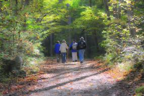 Great Smoky Mountains Backpacking – Appalachian Trail tour