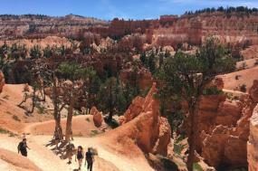 Bryce Canyon Hiking Weekend