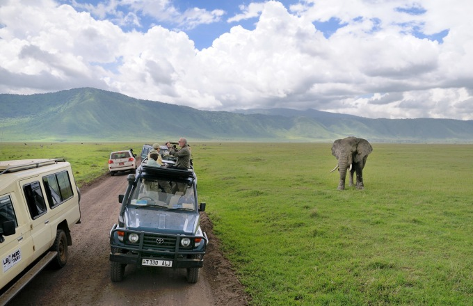 Great Migration Safari tour