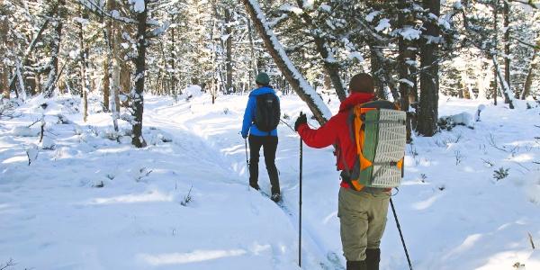 Ski walk with Exodus tours